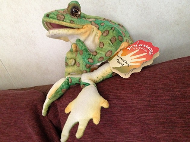 Frog Puppet photo by MRorabeck TSM