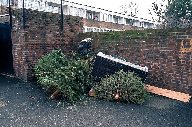 Christmas Trees Left by the Trash in London, Gareth Cattermole, Getty Images