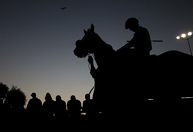 Horse Silhouette at Hollywood Park, Justin Sullivan, Getty Images