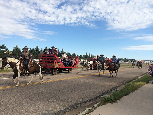 Cattle Drive with Wagon