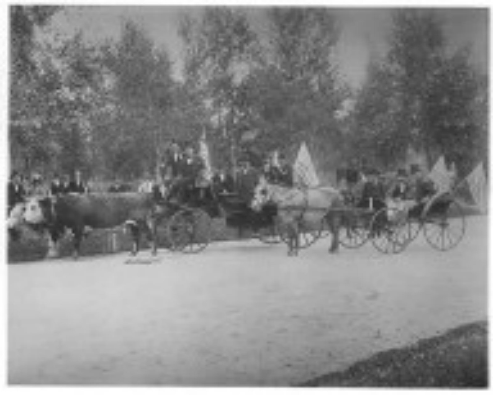Cheyenne Frontier Days In Pictures 1897 1901