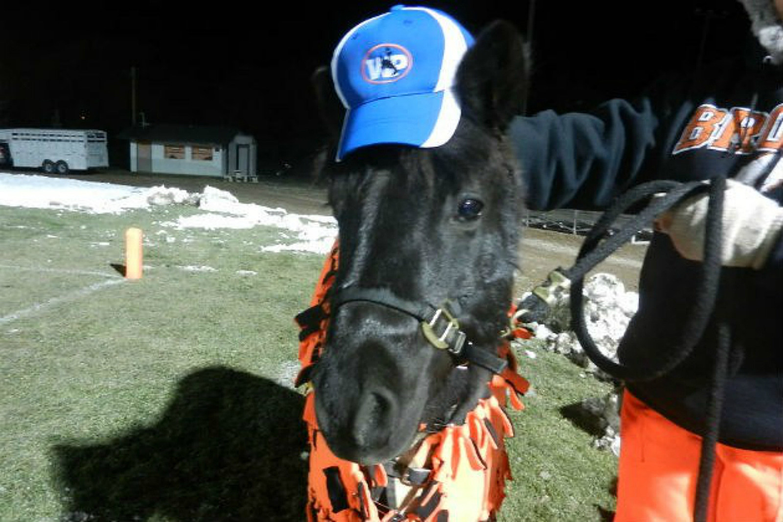 Shadow, the Burns Broncs Mascot. Kevin Koile, wyopreps.com